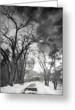 Winter Pathways Greeting Card