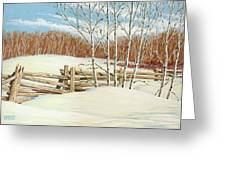 Winter Poplars 2 Greeting Card
