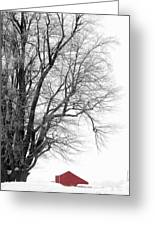 Winter Red And White  Greeting Card