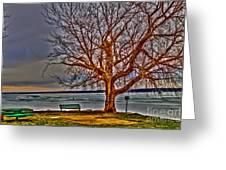 Winter Retreat Greeting Card