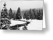 Winter Riverscape Greeting Card