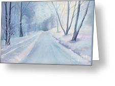 Winter Road Krkonose Mountains, From Photo By Milos Polacek Greeting Card