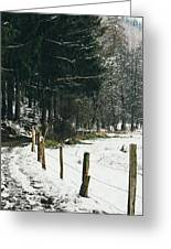 Winter Rural Pathway Greeting Card