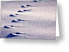 Winter Sand Greeting Card