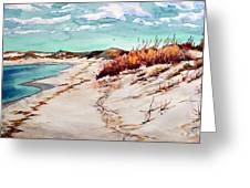 Winter Sands Greeting Card