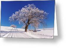 Winter Scene Genessee, Id Greeting Card