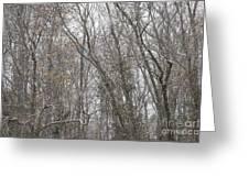 Winter Scenery Greeting Card