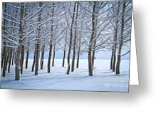 Winter Sentinels Greeting Card