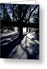 Winter Shadows 2 Greeting Card