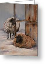 Winter Sheep Painting By Teresa Silvestri