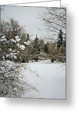 Winter Silence Greeting Card