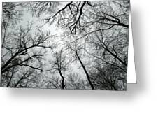 Winter Sky Greeting Card