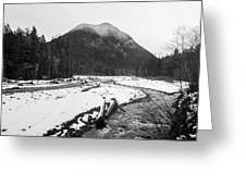 Winter Snow, Carbon River, Washington, 2016 Greeting Card