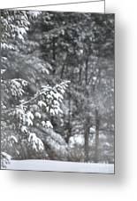 Winter Snow Greeting Card