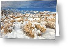 Winter Snowstorm Blankets The Alabama Hills California Greeting Card