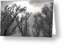 Winter Solstice Utah Greeting Card