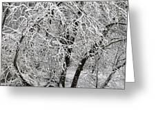Winter Storm Skylar Greeting Card