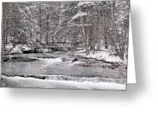 Winter Stream And Woods Greeting Card