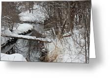 Winter Stream Greeting Card