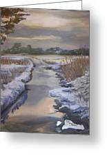 Winter Stream Greeting Card