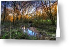 Winter Stream Sunset Greeting Card
