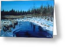 Winter Stream Greeting Card by William  Brody