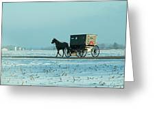 Winter Sun On Amish Buggy Greeting Card