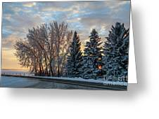 Winter Colors. Greeting Card
