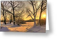 Winter Sunset Greeting Card by Jaroslaw Grudzinski
