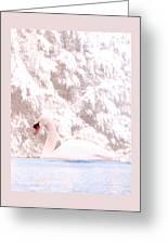 Winter Swan Greeting Card
