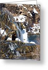 Winter Time At The Falls Greeting Card