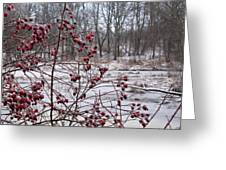 Winter Time Frozen Fruit Greeting Card