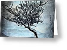 Winter Tree II Greeting Card