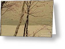 Winter Tree Over Bay Greeting Card