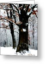Winter Tree Right Greeting Card