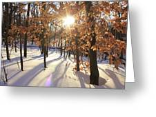 Winter Trees #1 Greeting Card