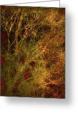 Winter Trees In Gold And Red Greeting Card