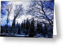 Winter Trees In Sweden Greeting Card