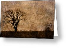 Winter Trees In The Bottomland 1 Greeting Card