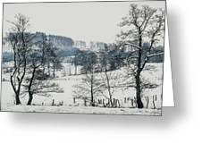 Winter Trees Solitude Landscape Greeting Card