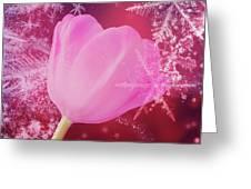 Winter Tulip Red Theme Snow Greeting Card