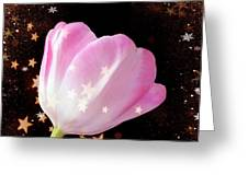 Winter Tulip With Gold Snow And Stars Greeting Card