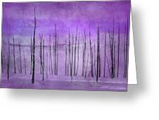 Winter Violet  7913violet Greeting Card