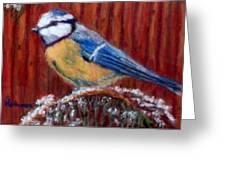 Winter Wait Greeting Card by Sandy Hemmer