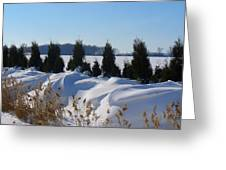 Winter Waves Greeting Card