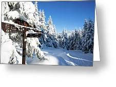 winter way in the Upper Harz Greeting Card