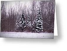 Winter White Magic Greeting Card
