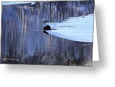 Winter Wildlife In New England Greeting Card