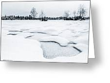 Winter Wonderland Bw Greeting Card