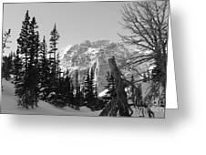 Winter Wonders 3 Greeting Card